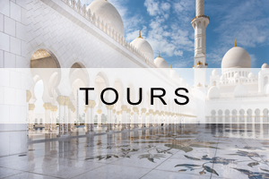 Search Tours